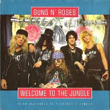 welcome to the jungle - Guns N'roses