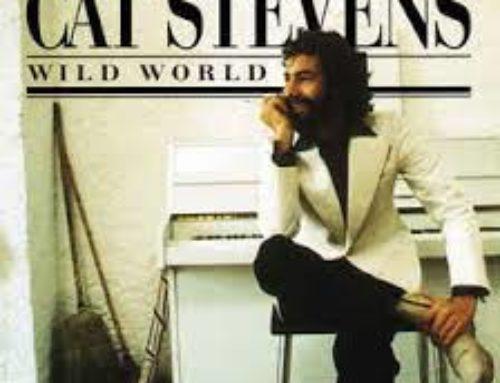 Wild World – Cat Stevens